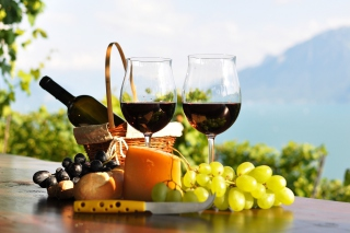 Picnic with wine and grapes Wallpaper for Android, iPhone and iPad