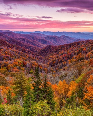 Autumn Mountains Alpine Panorama Background for 240x320