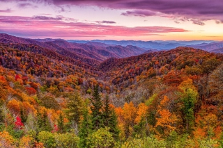 Autumn Mountains Alpine Panorama Picture for Android, iPhone and iPad