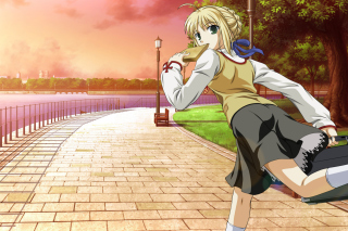 Fate stay night Saber Anime sfondi gratuiti per Samsung Galaxy Tab 4