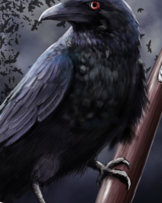 Raven Background for 360x640