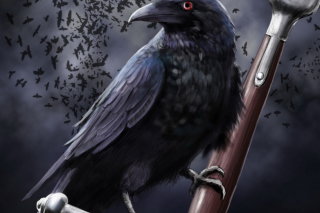 Raven Background for Samsung Galaxy Tab 4