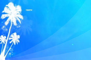 Free Tropic Abstract Picture for Android 2560x1600