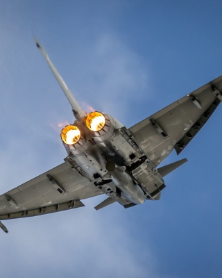 Typhoon Aircraft Picture for 240x320
