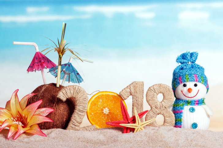 Happy New Year 2018 Beach Style wallpaper