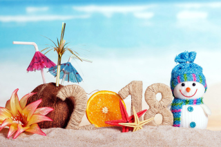 Kostenloses Happy New Year 2018 Beach Style Wallpaper für Desktop Netbook 1024x600