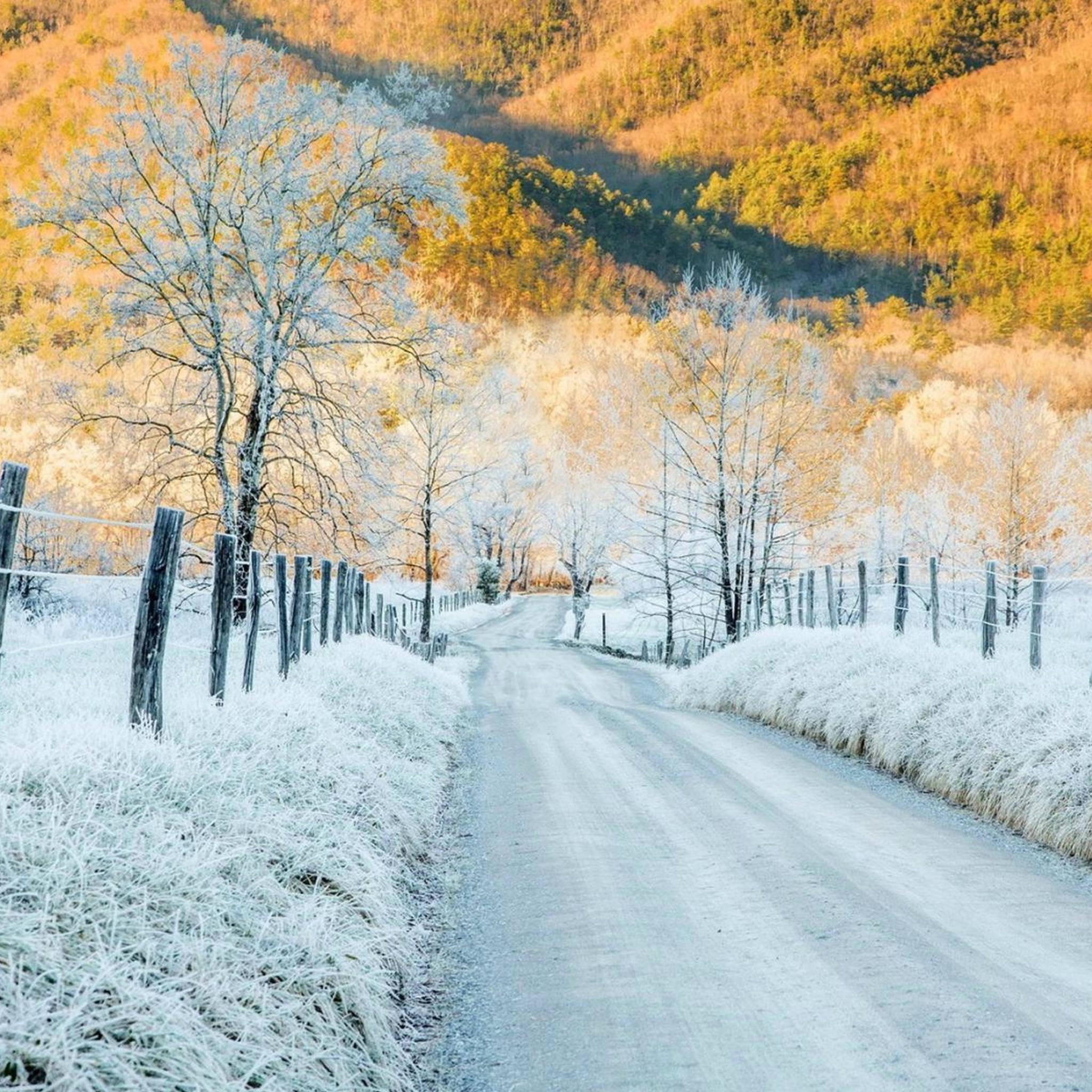 зима дорога иней снег скачать
