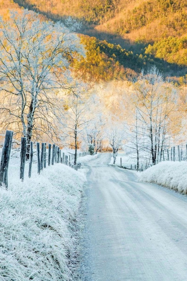 Fondo de pantalla Winter road in frost 640x960