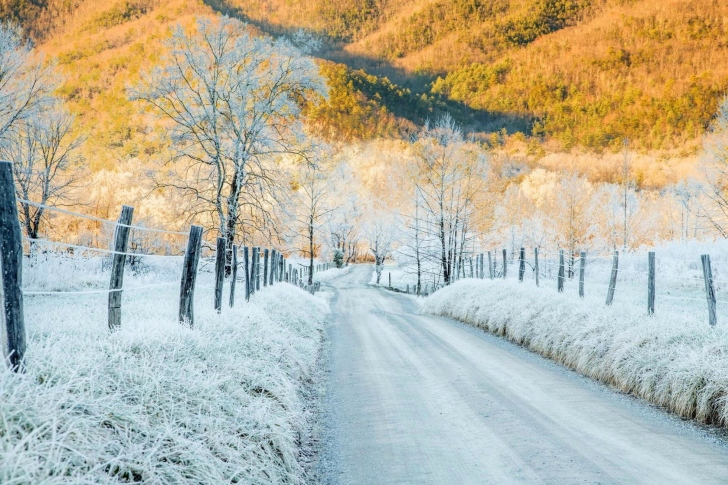 Winter road in frost wallpaper