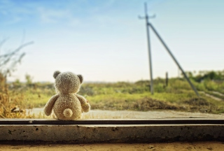 Lonely Teddy Wallpaper for Android, iPhone and iPad