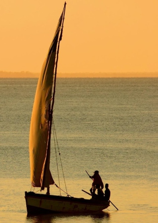Free Sailing In Ocean Picture for HTC Titan