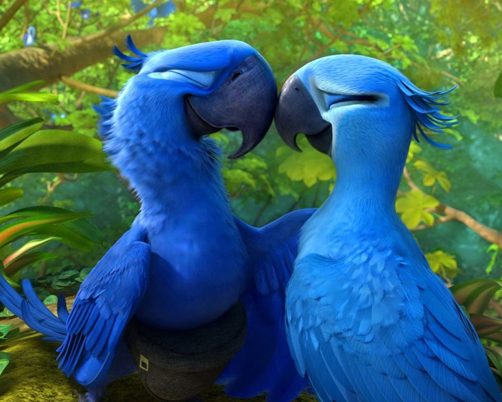 Жемчужинка и голубчик, мультфильм Рио бесплатно