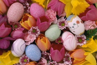 Easter Eggs And Flowers Background for Android, iPhone and iPad