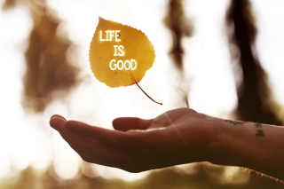 Life Is Good Wallpaper for Android, iPhone and iPad