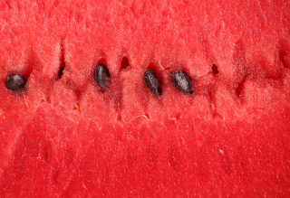 Free Juicy Watermelon Picture for Android, iPhone and iPad