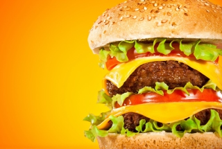 Double Cheeseburger Wallpaper for Android 480x800