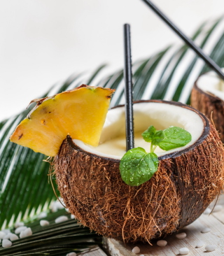 Free Coconut Cocktail Picture for HTC Titan