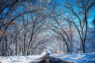 Free Winter Tunnel Picture for Android, iPhone and iPad