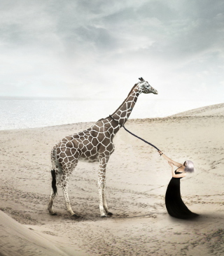Free Girl And Giraffe Picture for Nokia C1-01