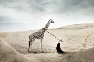 Free Girl And Giraffe Picture for Android, iPhone and iPad