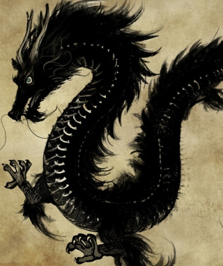 Chinese Black Dragon Wallpaper for Nokia C1-01