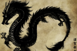 Chinese Black Dragon - Fondos de pantalla gratis para Samsung I9080 Galaxy Grand