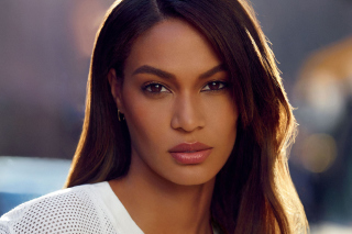 Joan Smalls Background for Android, iPhone and iPad