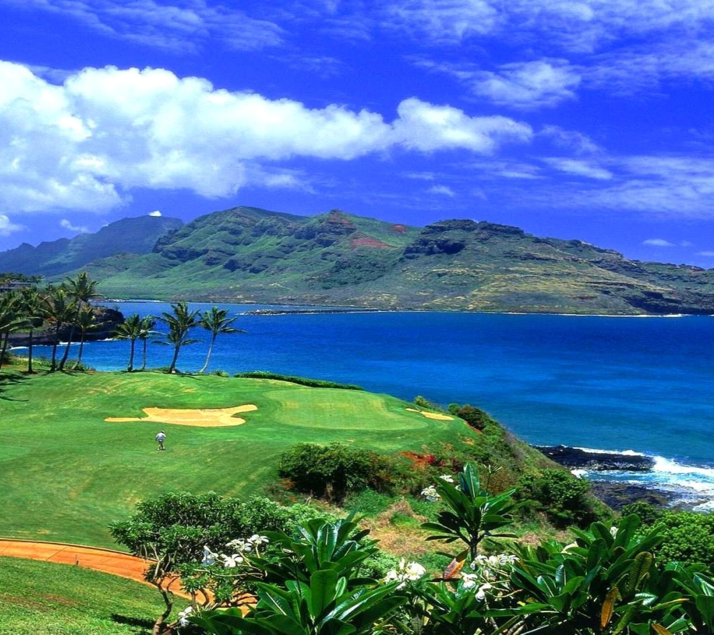 Paradise Golf Field wallpaper 1440x1280