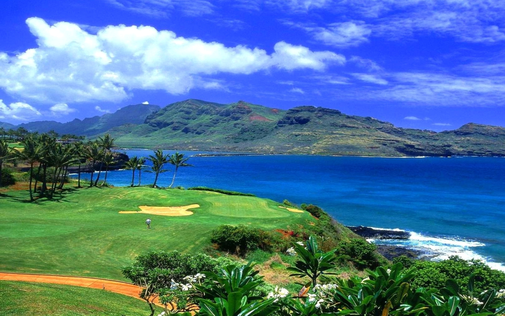 Screenshot №1 pro téma Paradise Golf Field 1920x1200