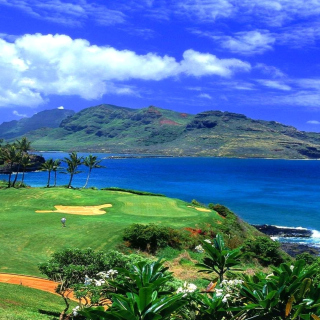 Paradise Golf Field Background for iPad mini 2