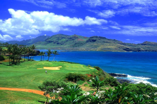 Paradise Golf Field Background for Android, iPhone and iPad