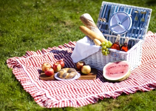 Free Summer Picnic Picture for Android, iPhone and iPad