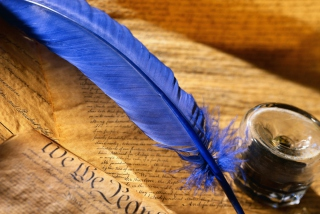 Blue Writing Feather - Obrázkek zdarma