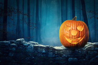 Pumpkin for Halloween Background for Android, iPhone and iPad