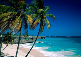 Paradise Beach Wallpaper for Android, iPhone and iPad