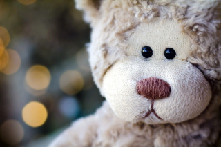 Sad Teddy Picture for Android, iPhone and iPad