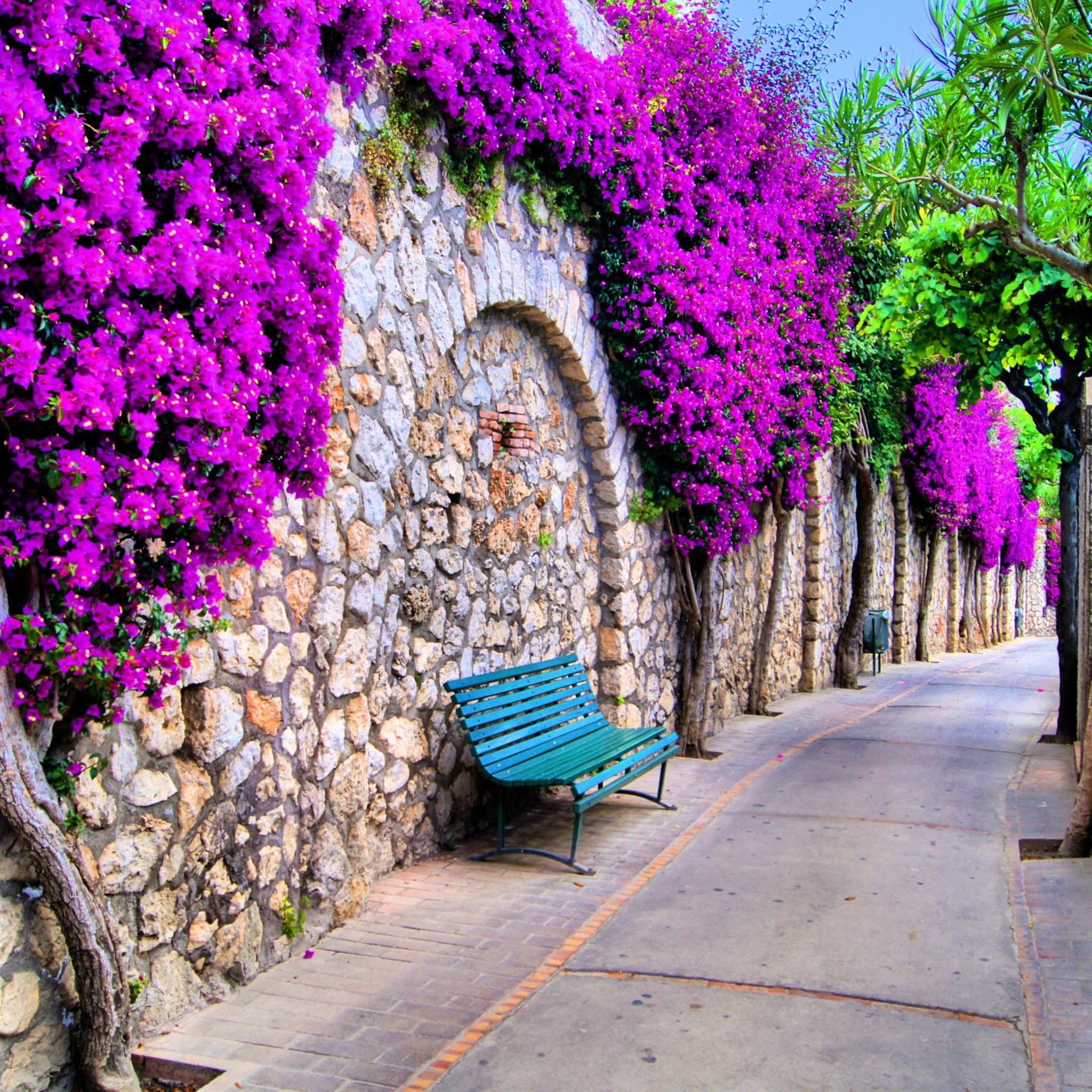 цветы аллея ступеньки flowers alley steps скачать