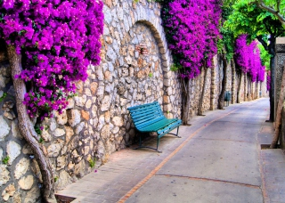 Kostenloses Bench And Purple Flowers Wallpaper für Android, iPhone und iPad