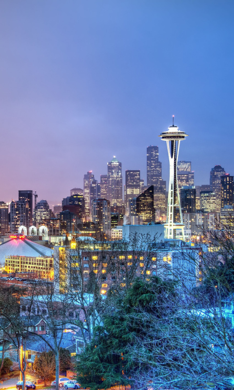Seattle Panorama Photo wallpaper 480x800