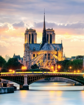Free Notre Dame de Paris Catholic Cathedral Picture for Nokia Asha 310