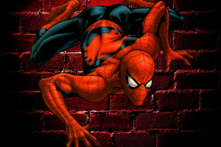 Spiderman Picture for Android 800x1280