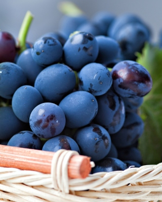 Grapes from Greece - Fondos de pantalla gratis para HTC Touch Diamond CDMA