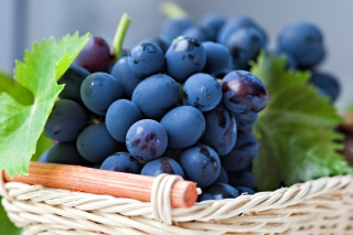 Grapes from Greece sfondi gratuiti per Samsung Galaxy Pop SHV-E220