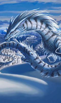 Screenshot №1 pro téma Winter Dragon 240x400
