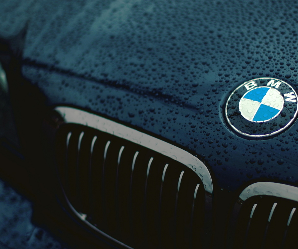 Screenshot №1 pro téma Bmw Logo after Rain 960x800