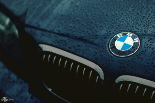 Bmw Logo after Rain Background for Android, iPhone and iPad