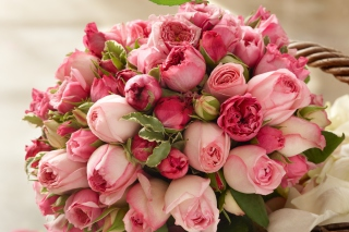 Free Bouquet of pink roses Picture for Android, iPhone and iPad