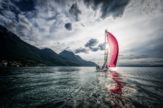 Pink Sail Wallpaper for Android, iPhone and iPad