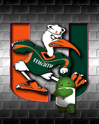 Miami Hurricanes football Background for Nokia C5-03