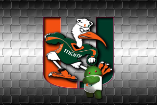 Miami Hurricanes football Picture for Android, iPhone and iPad